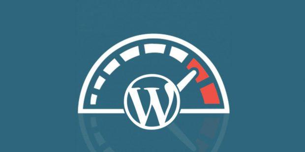 افزایش و اندازه گیری سرعت وب سایت وردپرس